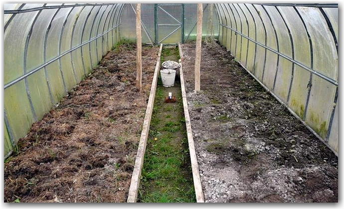 Как подготовить почву в теплице?